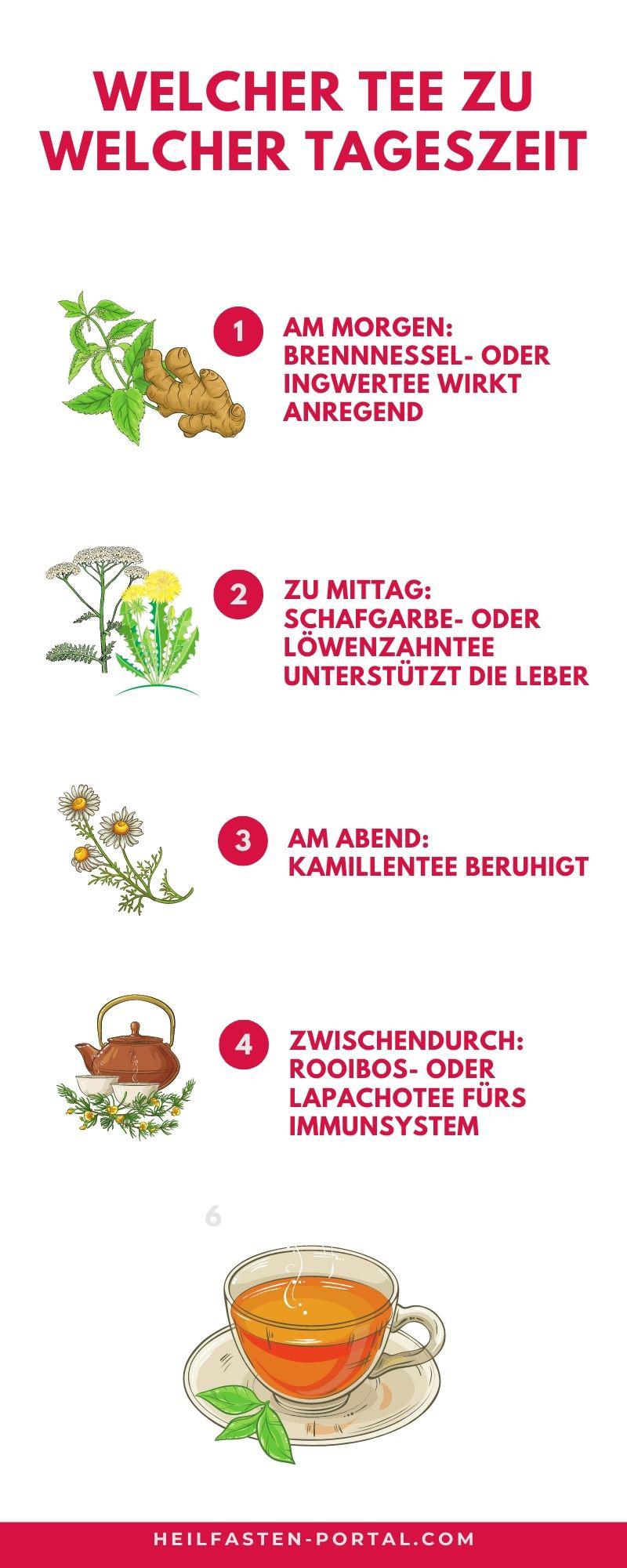 Infografik - Wann ist welcher Tee beim Heilfasten erlaubt
