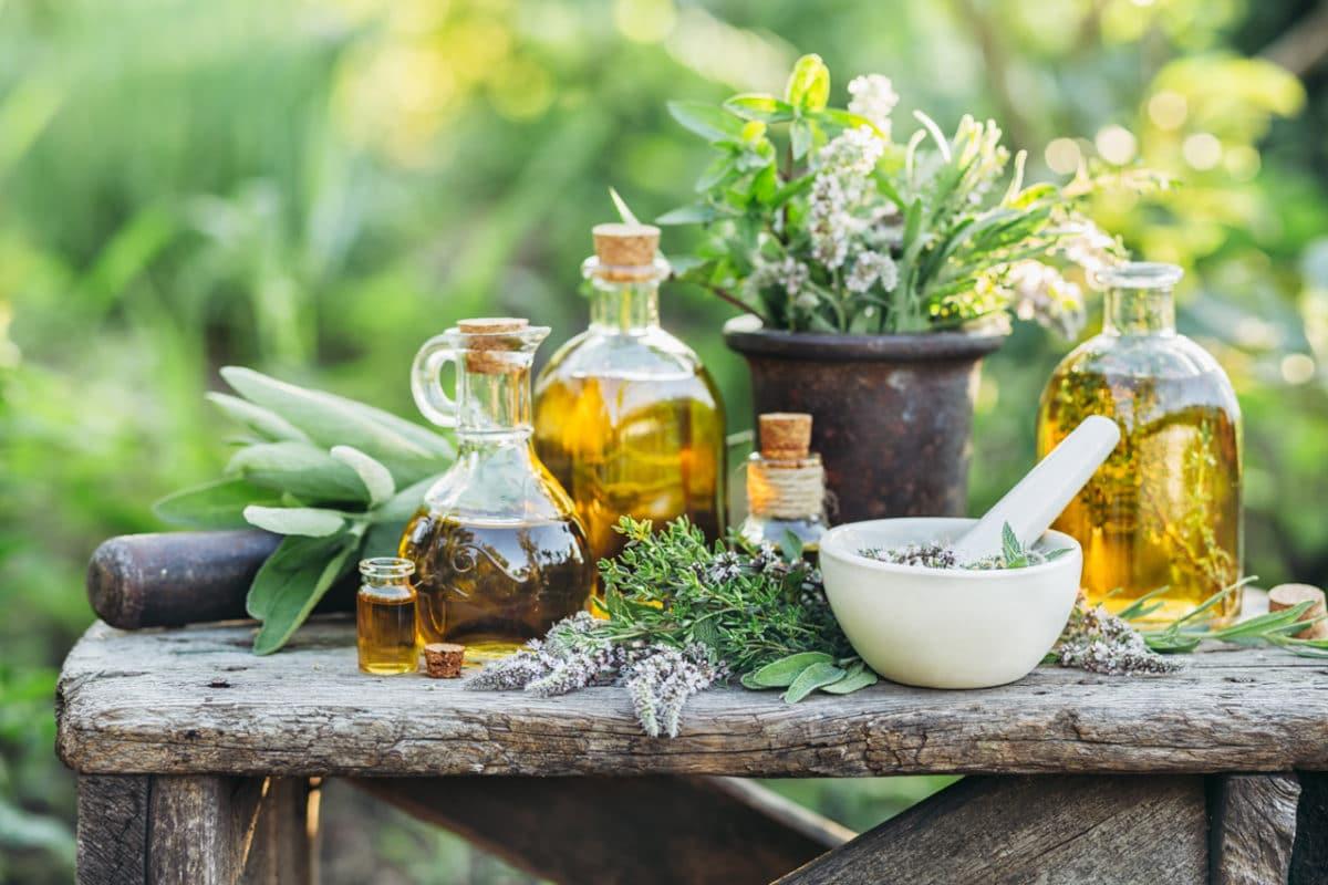 Verschiedene Kräuter zur Verwendung als Hausmittel zur Entgiftung des Körpers